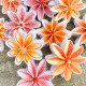 14 Stempelmotive für Faltblume Nr.16 Mini